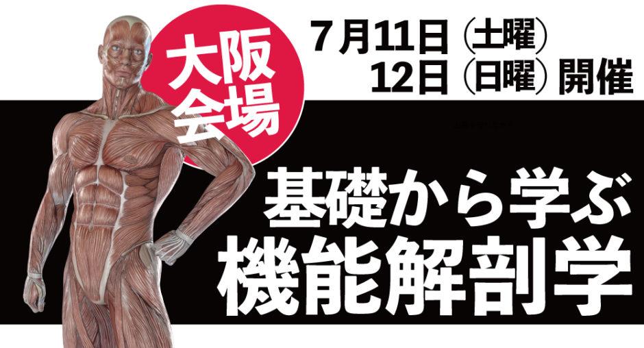 機能解剖学(大阪)