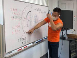 【仙台開催!】運動指導のレベルが上がるファンクショナルアナトミースペシャリスト03