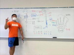 【札幌開催!】機能解剖学の基礎が学べるファンクショナルアナトミースペシャリスト03