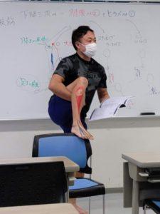 【札幌開催!】機能解剖学の基礎が学べるファンクショナルアナトミースペシャリスト06